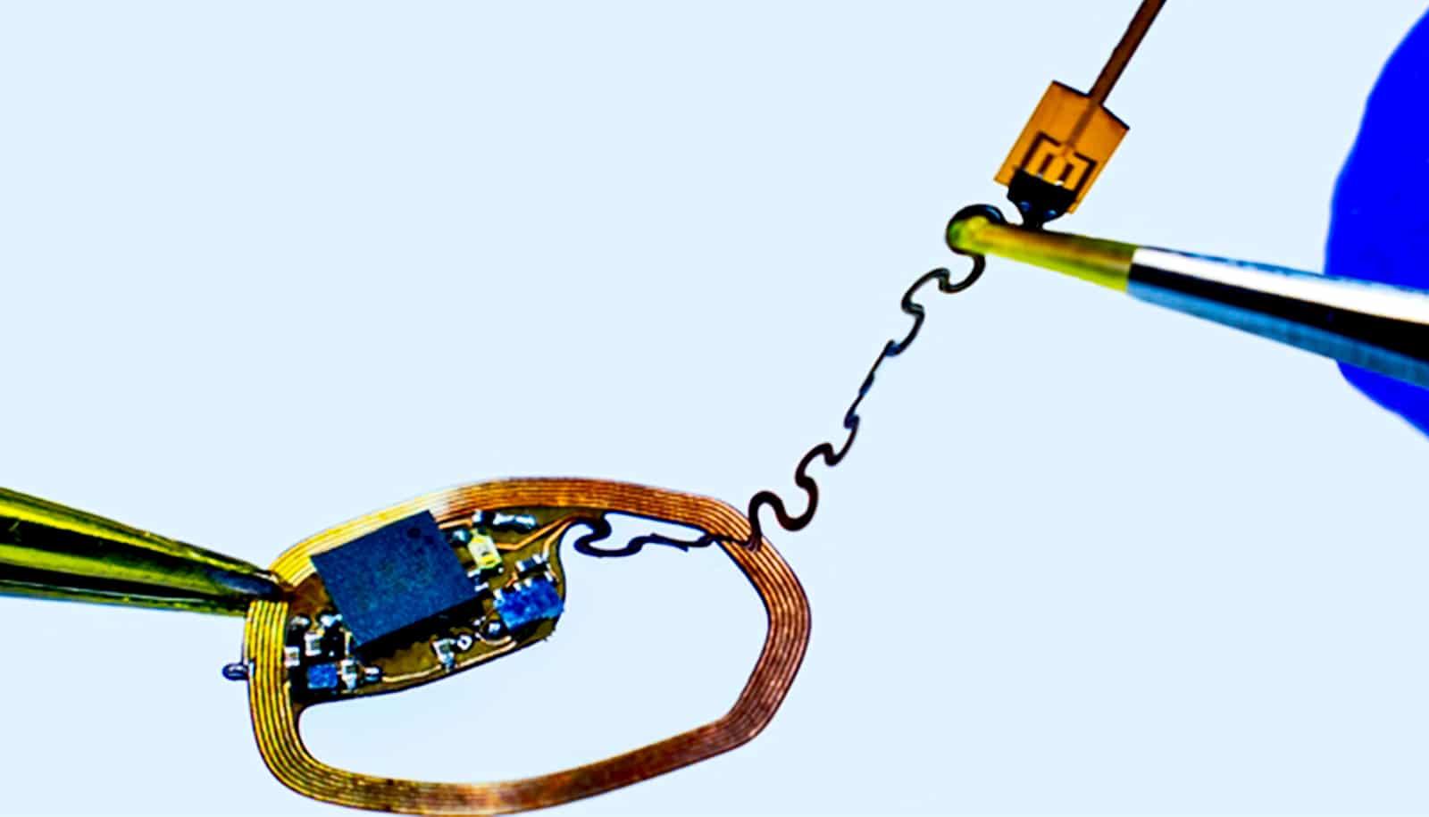 Tiny device records single neurons in the brain - Futurity