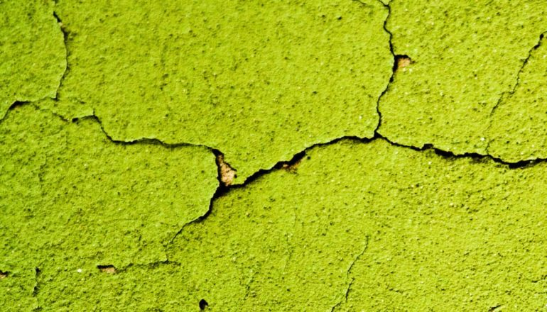 cracks in green surface