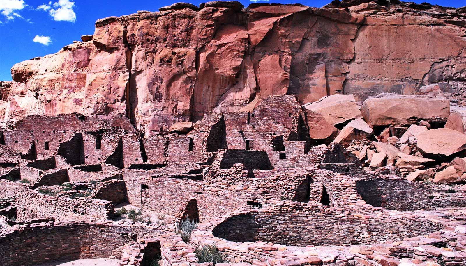 Mysterious Pueblo Bonita tree has a simple origin story