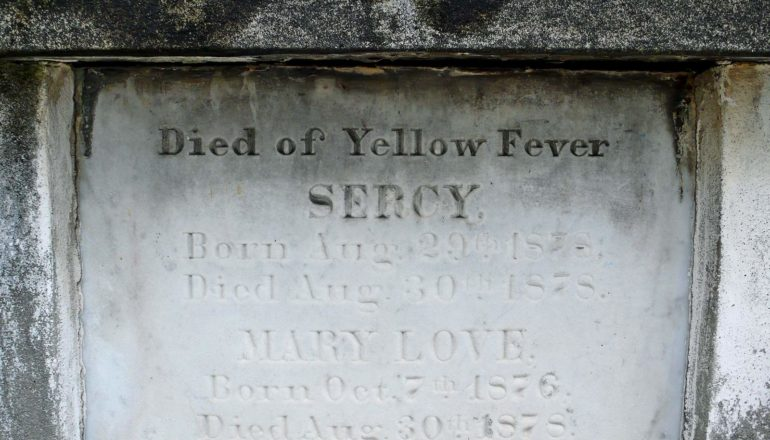 "grave says ""died of Yellow Fever"" Sercy Born Aug. 29 18?8 Died Aug. 30 1878. Mary Love Born Oct 7 1876 Died Aug 30th, 1878"