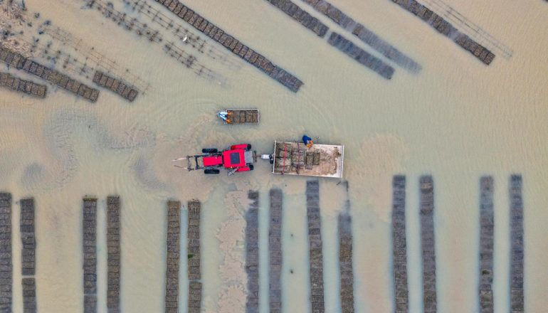 tractor and oyster farm from above