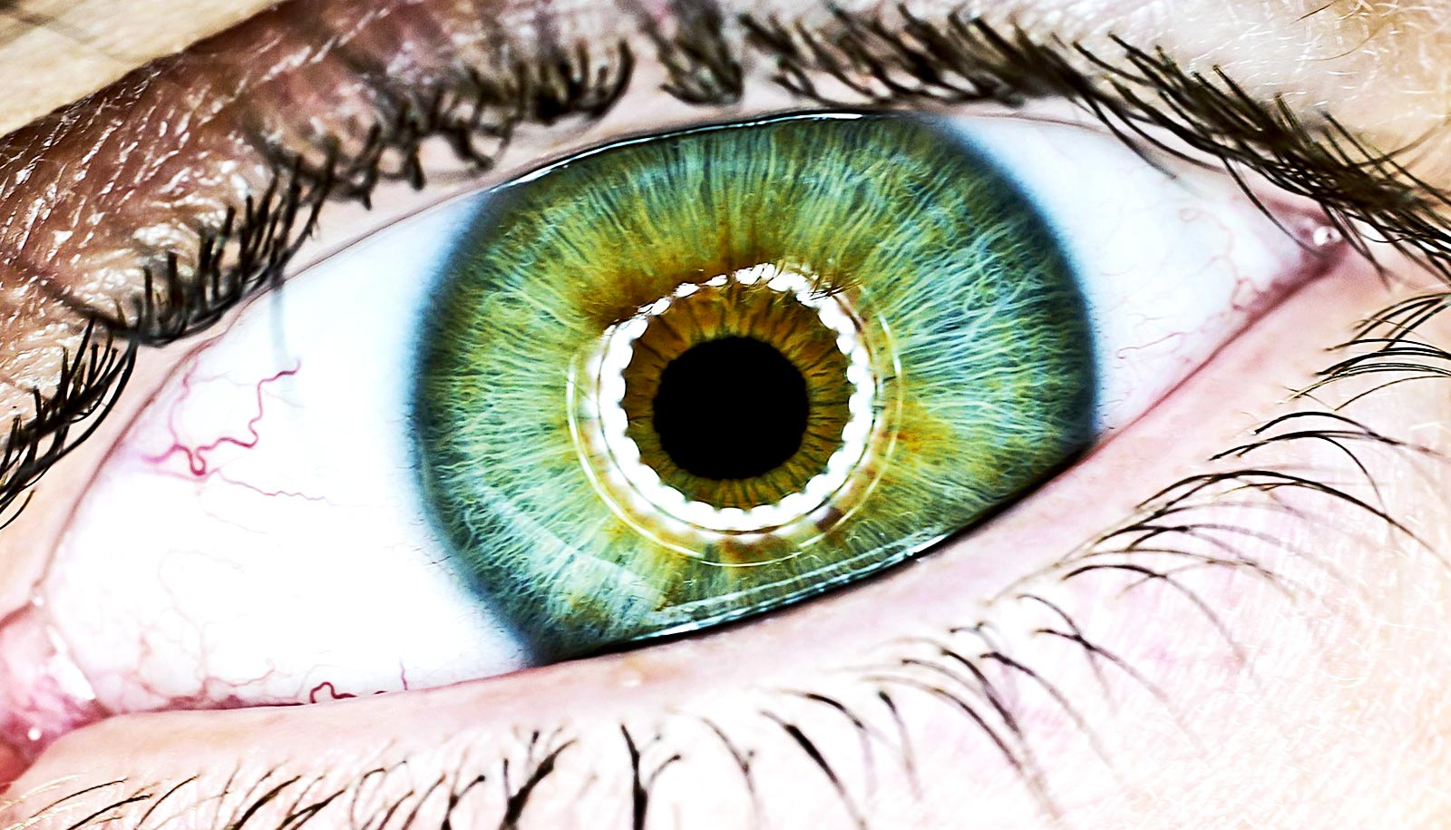 Your pupils show whether you'll remember stuff - Futurity