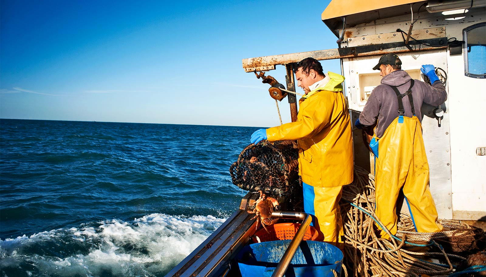 Fishing saps the ocean's power to capture carbon - Futurity